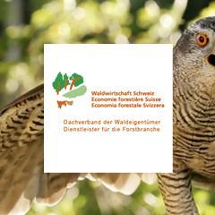 Waldwirtschaft Schweiz, WVS, Kampagne unser Wald. Nutzen für alle.